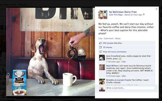 A friend tipped Theron Humphrey that So Delicious had used one of his images without permission or credit.