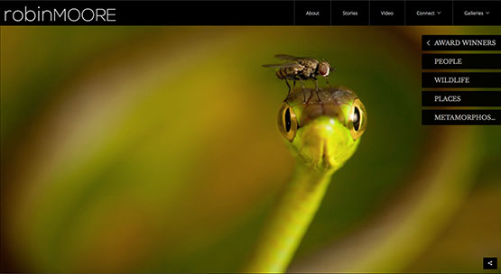 The homepage of photographer Robin Moore's new PhotoShelter Beam portfolio site.