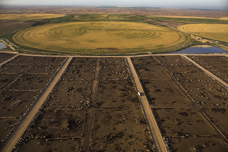 Brookover Ranch Feed Yard near Garden City, Kansas, with adjacent crop circles of grain used to fatten cattle. © 2014 George Steinmetz/National Geographic