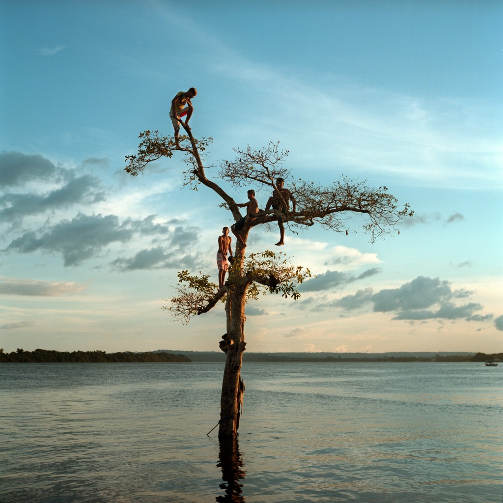 March 29, 2014. A group of boys climb a tree on the Xingu River by the city of Altamira, Brazil. One third of the city will be permanently flooded by the nearby Belo Monte Dam. Photo © Aaron Vincent Elkaim.