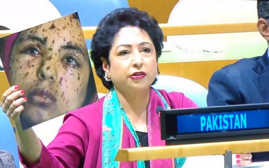 Pakistan's UN Envoy Criticizes India, but Uses Gaza News Photo to Do It | PDNPulse