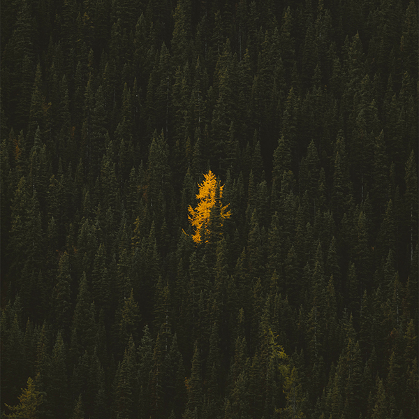 Alex Strohl talks travel photo gear in his new online workshop.